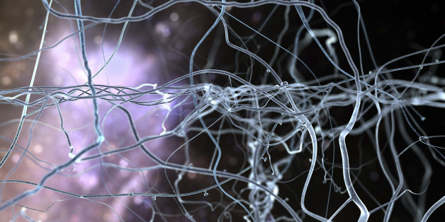 Serotonin Map Of The Brain Could Help Scientists Create Better Antidepressants