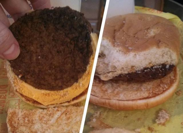 mcdonalds cheeseburger rot