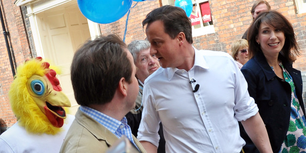 Cameron confronted by the Daily Mirror's chicken, not one from Nandos, during the 2010 campaign