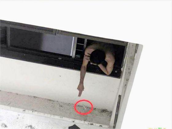 cigarette butt window