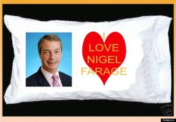 nigel farage pillow