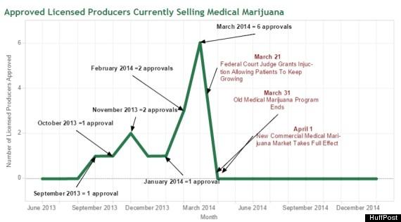 medical marijuana approvals