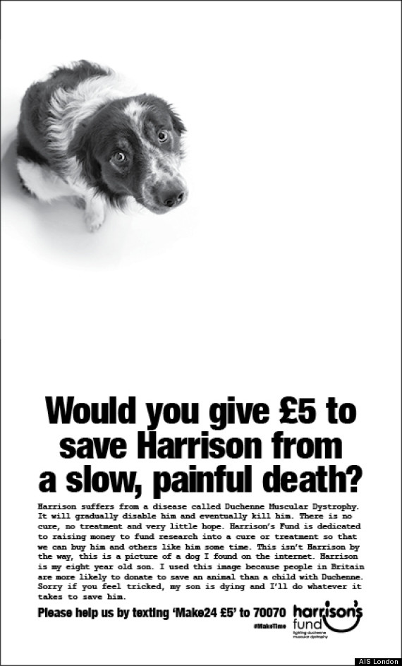 harrisons fund
