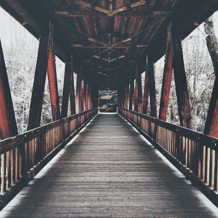 Puentes, pasos y viaductos: fotos de arquitectura para disfrutar (FOTOS)