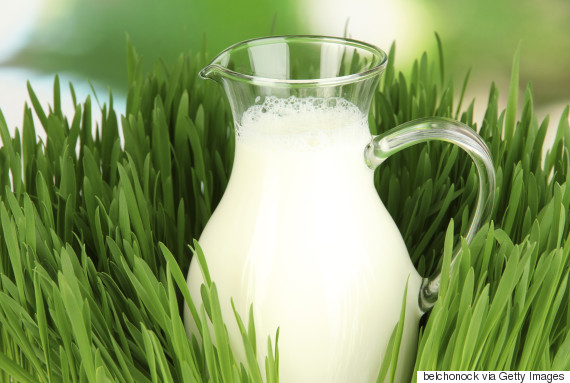 goats milk