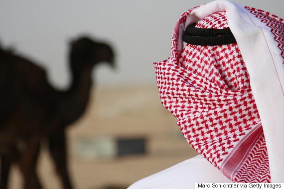 saudi camel