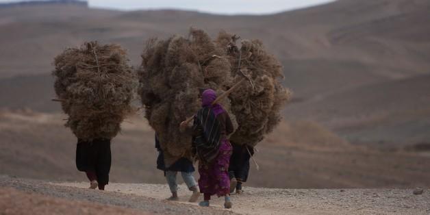 Les femmes rurales forment près de la moitié de la main-d'œuvre agricole dans le monde