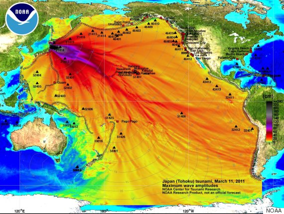 japan tsunami one year later