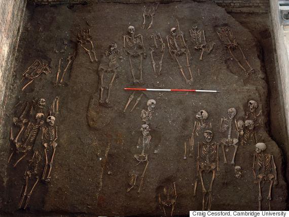 skeletons cambridge