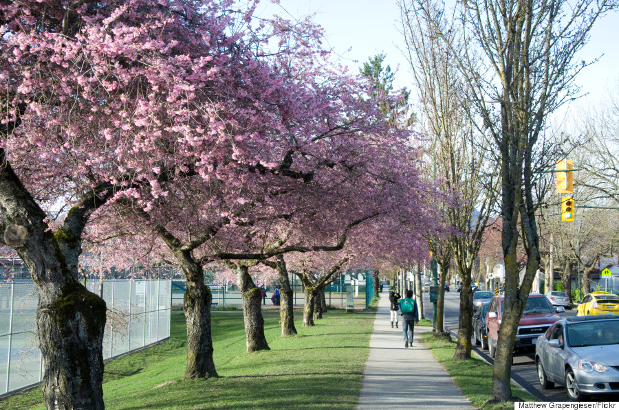 15 Canadian Places That Are Magical In Springtime