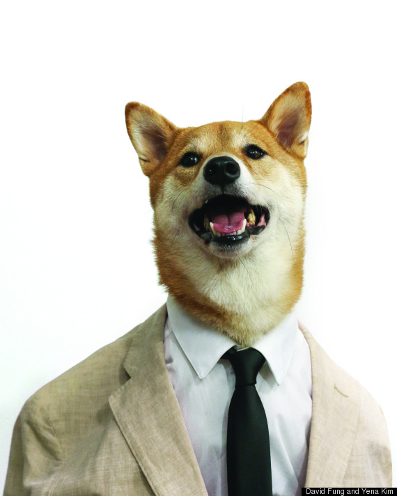 Your New Style Icon: Menswear Dog On What To Wear To A Summer Wedding