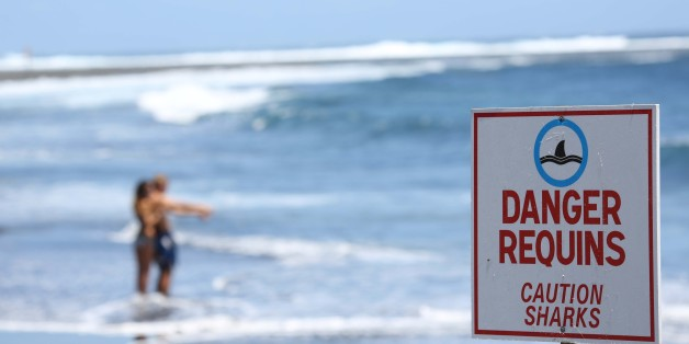 The Most Dangerous Beaches For Shark Attacks In US