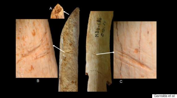 neanderthal bones