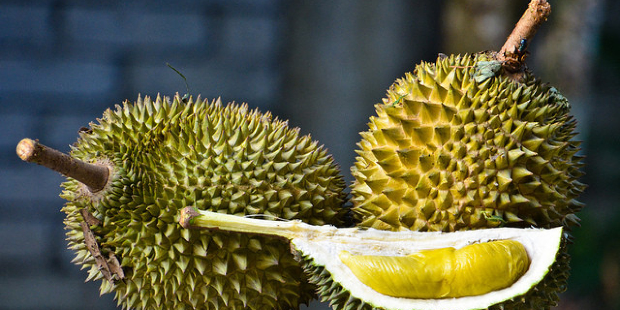 wtf is durian and why would you ever want to eat it huffpost. Black Bedroom Furniture Sets. Home Design Ideas