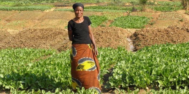 Photo taken by Remi Nono-Womdim, FAO, July 2010