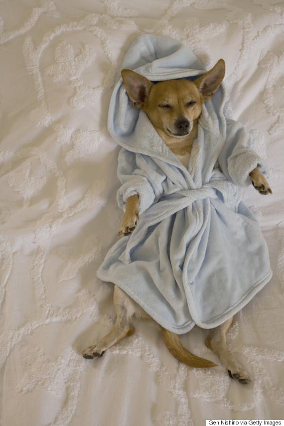 sleeping robe