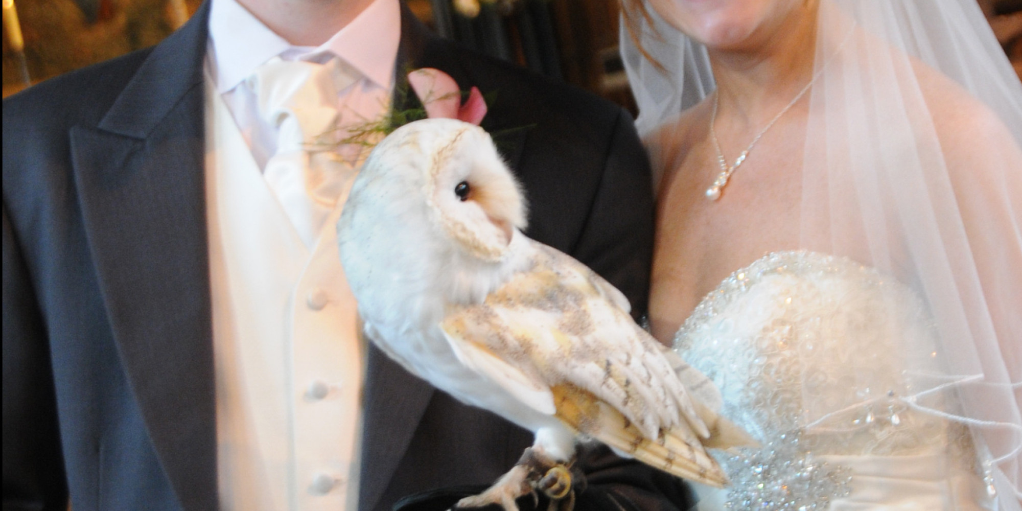 This Owl Ring Bearer Is A Harry Potter Fans Dream Come True