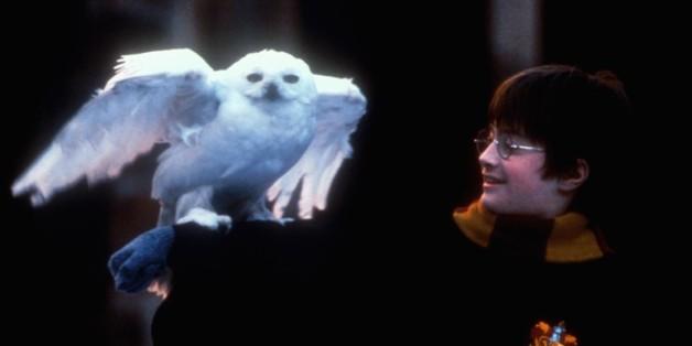 (GERMANY OUT) Harry Potter Und Der Stein Der Weisen Daniel Radcliffe Harry Potter (Daniel Radcliffe)  (Photo by United Archives/ullstein bild via Getty Images)