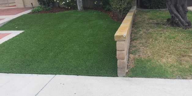 Michael Fouch installed artificial turf two weeks ago. His neighbor's natural grass (right) looks like his once did.