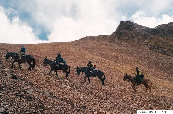 argentine army soldiers and journalist ride mules