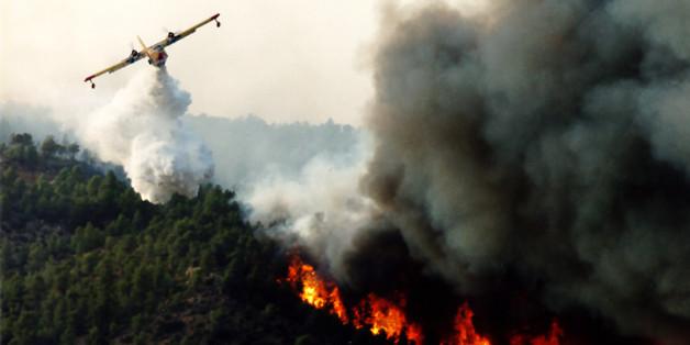 Coloriage Feu De Foret.Tetouan Un Incendie A Ravage Pres De 50 Hectares De Foret Al