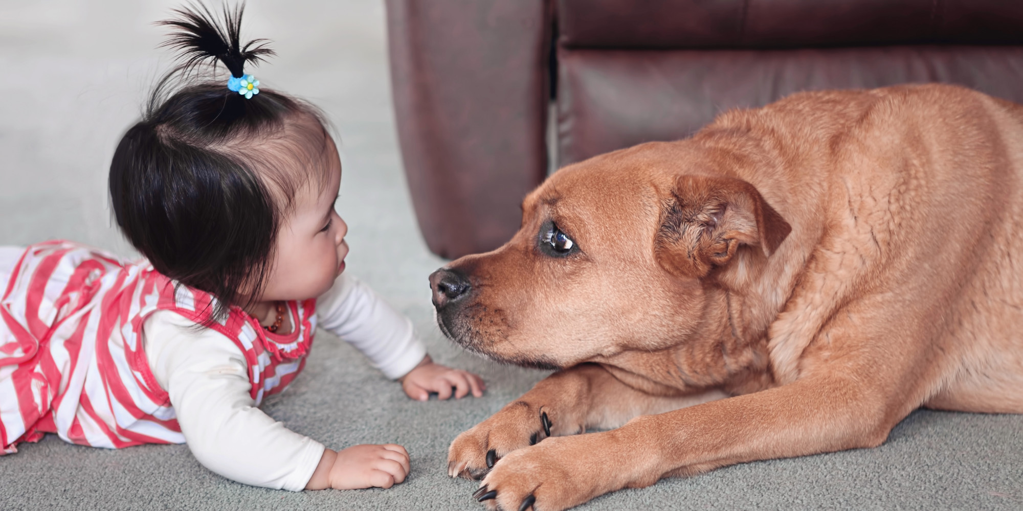 12 Baby Names Inspired By Animals Huffpost