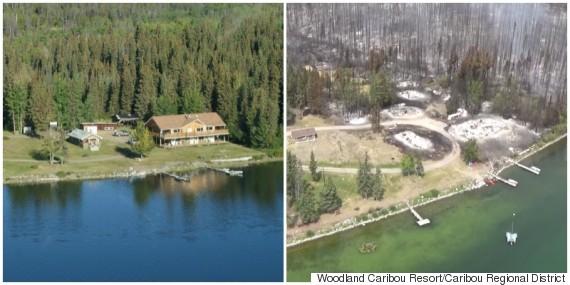 woodland caribou resort
