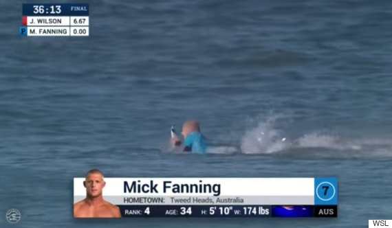 mick fanning shark attack