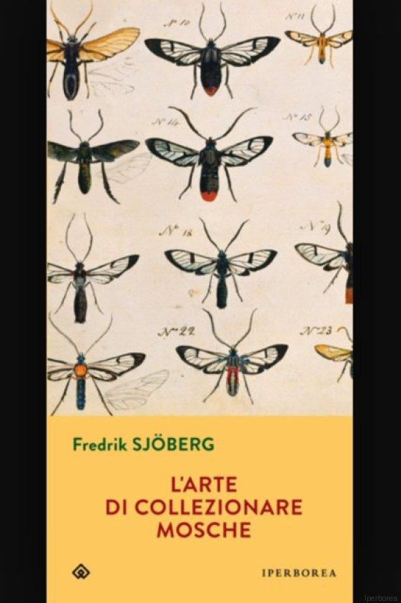collezionare mosche
