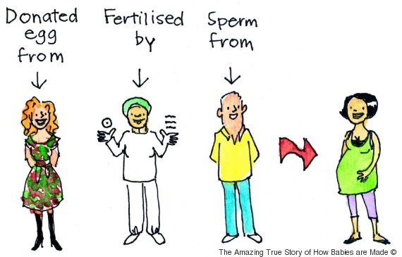 Egg And Sperm Donor