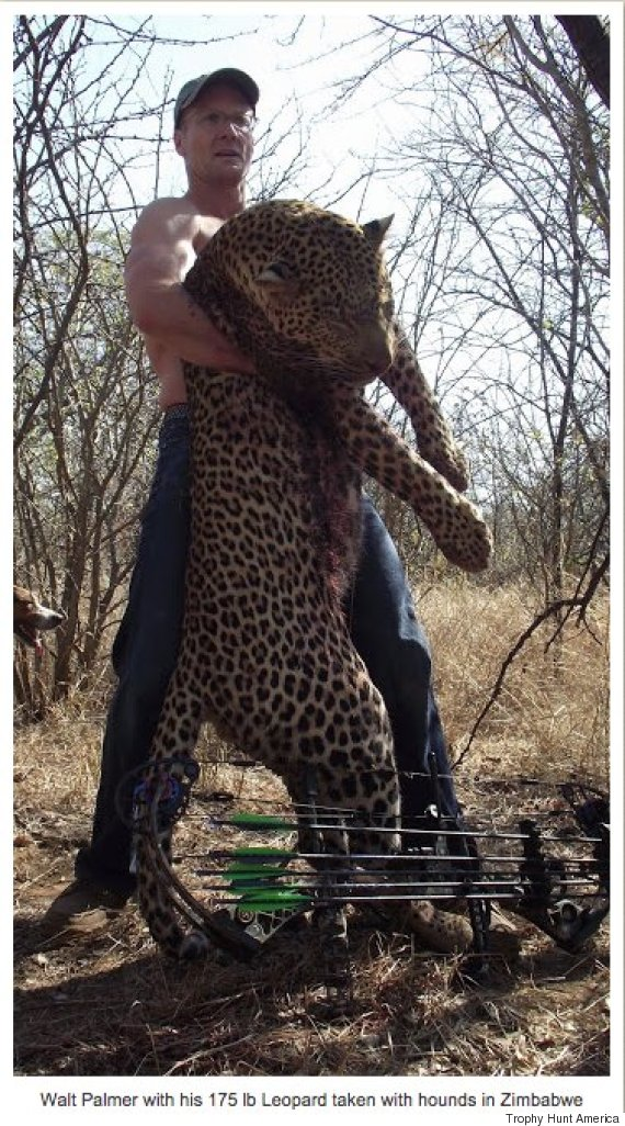 trophy hunt america