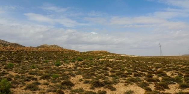 Oued Chaaba, Batna