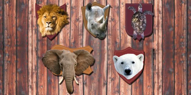 Ces animaux en danger qui sont toujours chassés