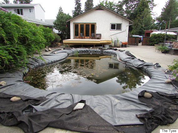 alexis friesen penticton pool