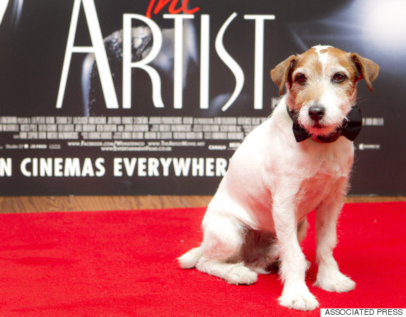 uggie the artist