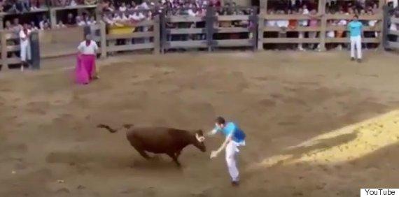 bull fighter spain