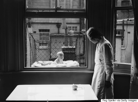baby cage window