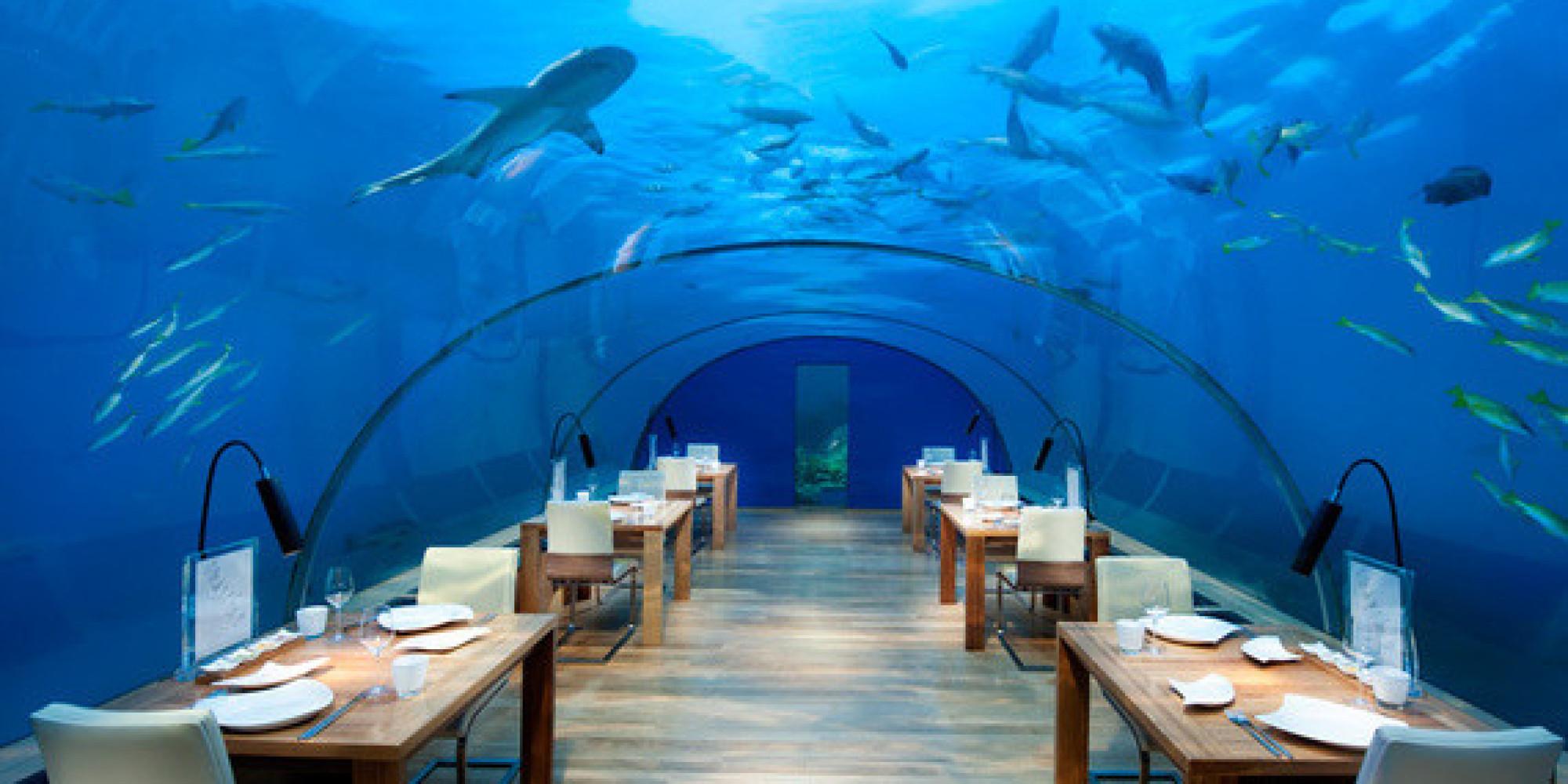 Aquarium Restaurant Kemah Tx 1000 Ideas