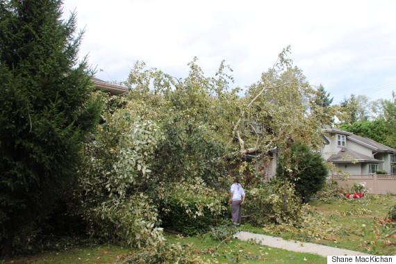 vancouver windstorm