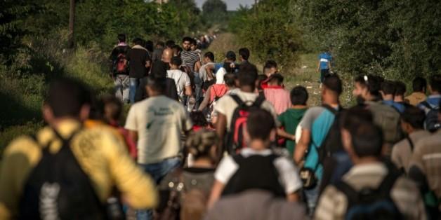 Flot des migrants le 28 août 2015 près de la ville serbe d'Horgos à la frontière avec la Hongrie