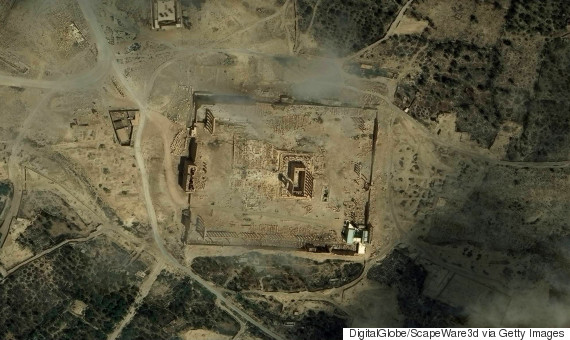 palmyra satellite