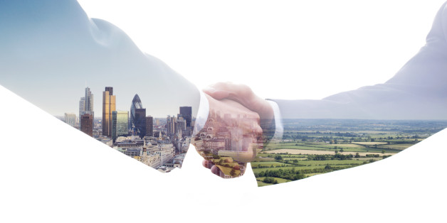 Navigating Sustainability and Your Fiduciary Duty