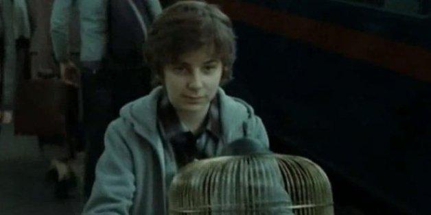Devinez quelle maison a rejoint le fils de Harry Potter?