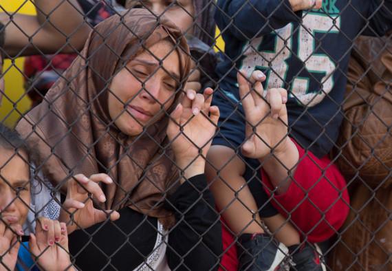 refugee zaun