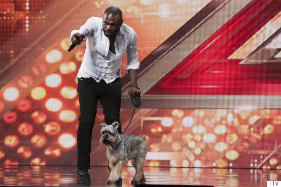 anton stephans x factor