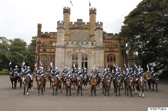 nsw police horses
