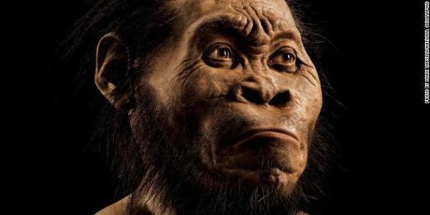 Homo naledi, une ancienne espèce inconnue du genre humain découverte en Afrique du sud