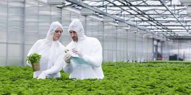 Agrochemiekonzerne werden oft untersucht.