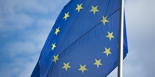 Nicht erst seit der Griechenlandkrise steht die Währungsunion unter Kritik