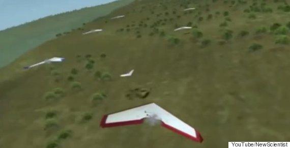 zephyr drones